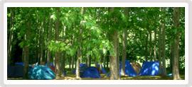 acampada_el_rourell_thumb