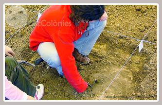 L'excavació arqueològica